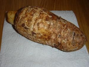 Taro Root (Colocassia)